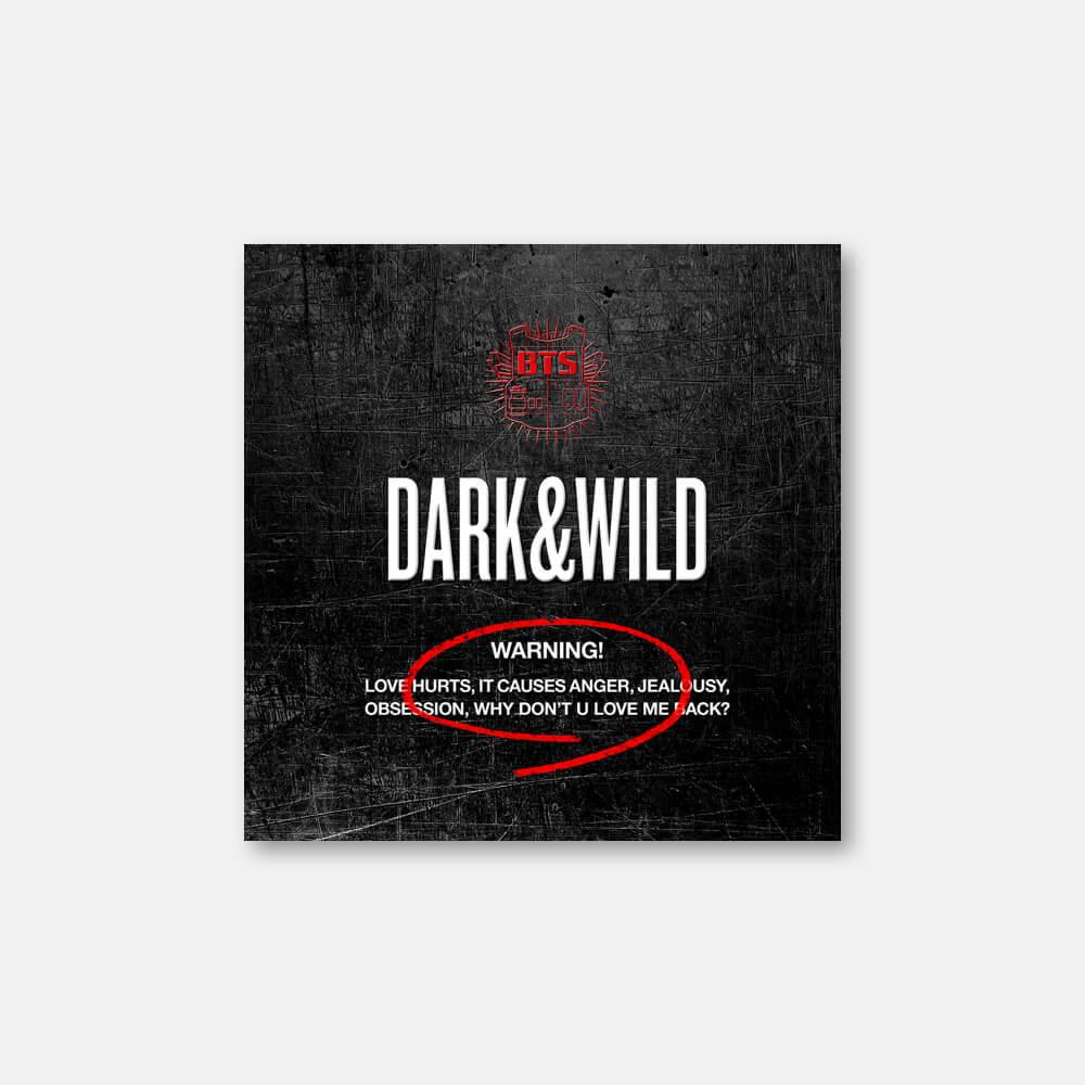 정규 1집 [Dark & Wild]