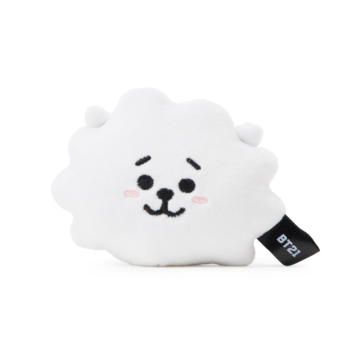 [BT21] RJ WINTER HEATABLE TOY